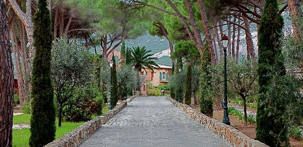 va da une grande maison de famille dans un grand parc planta de pins parasolsa