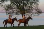 Puerto Valle - chevaux