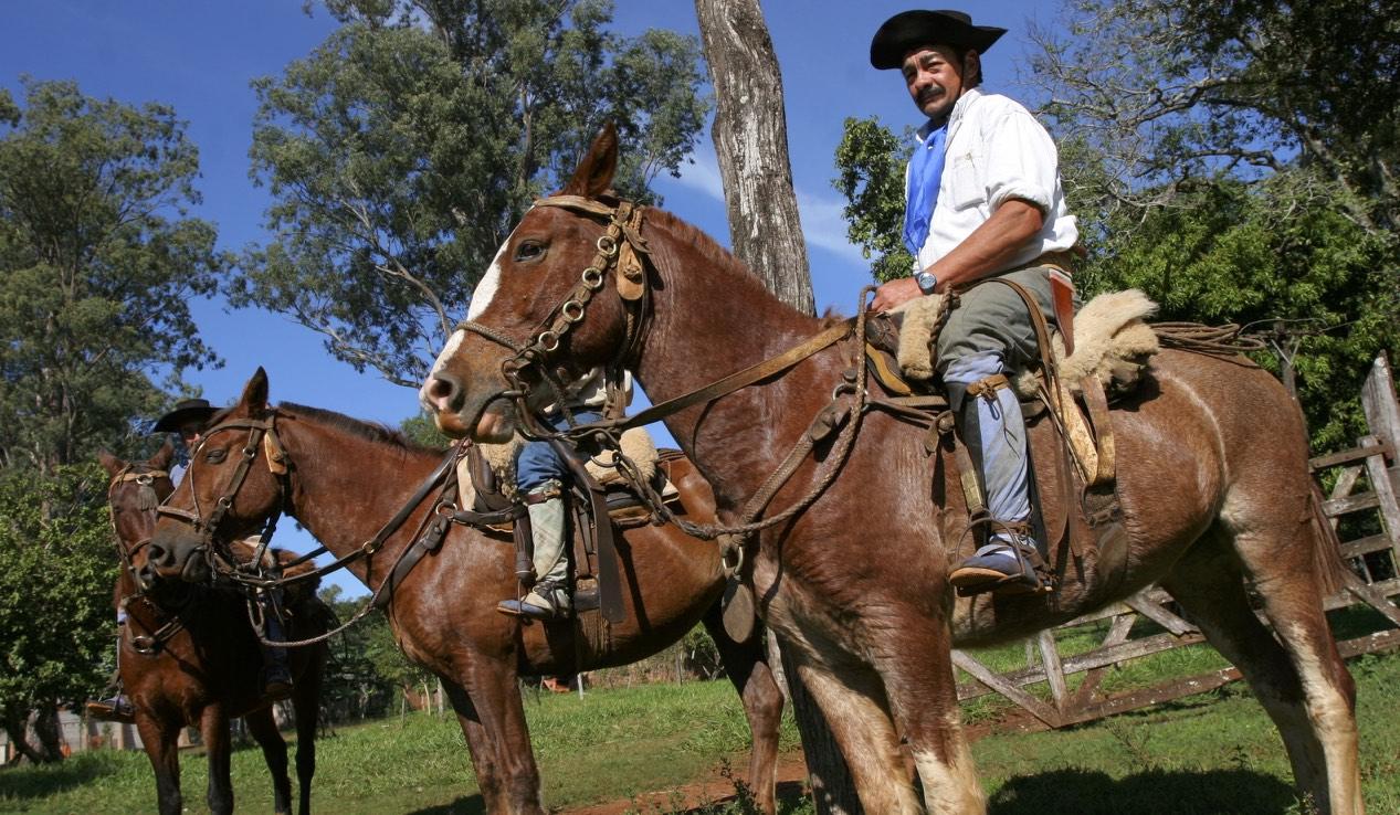 Santa Cecilia - chevaux