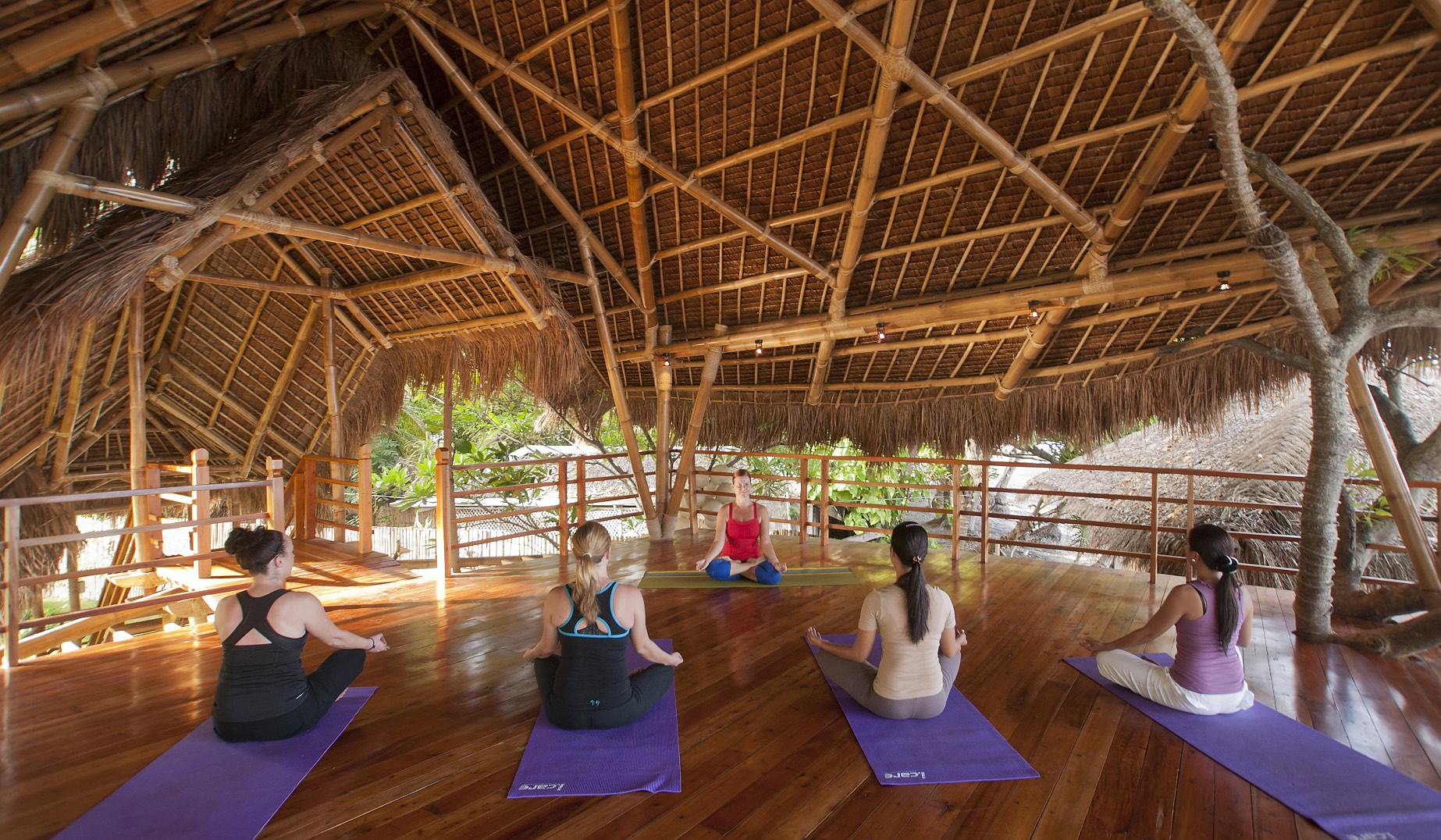 yoga-class-in-treehouse